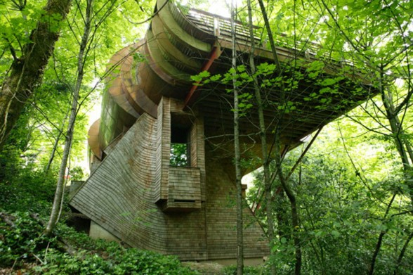 Minimalist Simple Tree House Designs – King of The Frogs in Germany