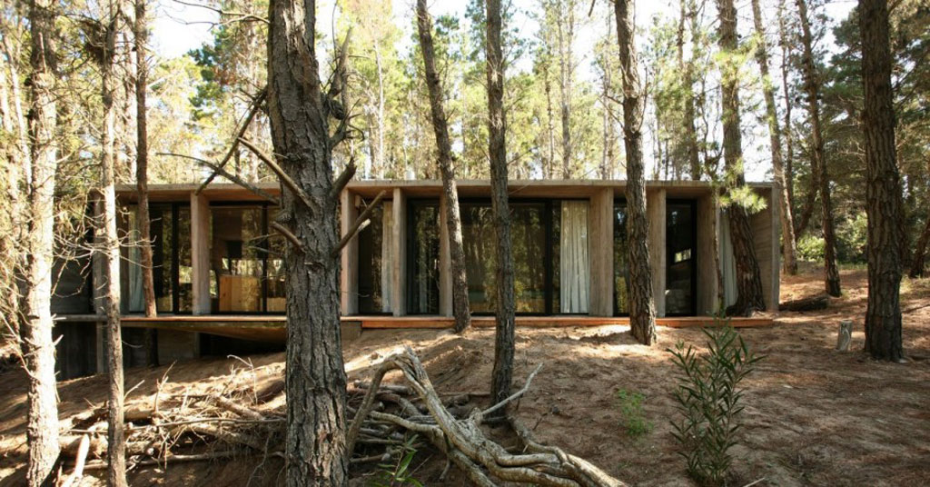Concrete house plans in forest viahouse com for Forest house plans