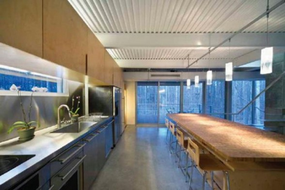 Modern Houses in Forest Environment, A Slop Home Design - Kitchen