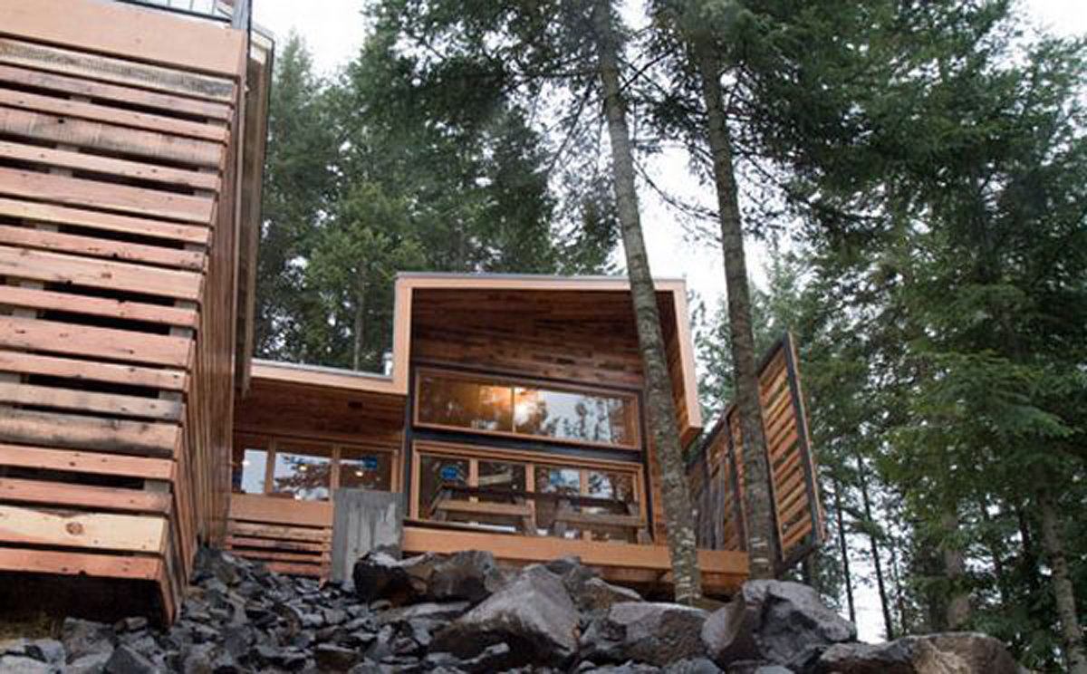 Forest House Architectural, A Michael Flowers Architect Work - Architecture