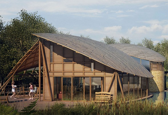 Sustainable Wooden Home Design in England - Backyard