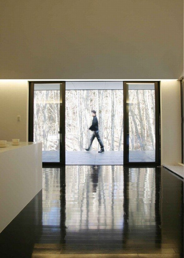 Forest House Design with Futuristic Architecture from Curiosity - Glass Entrance Door