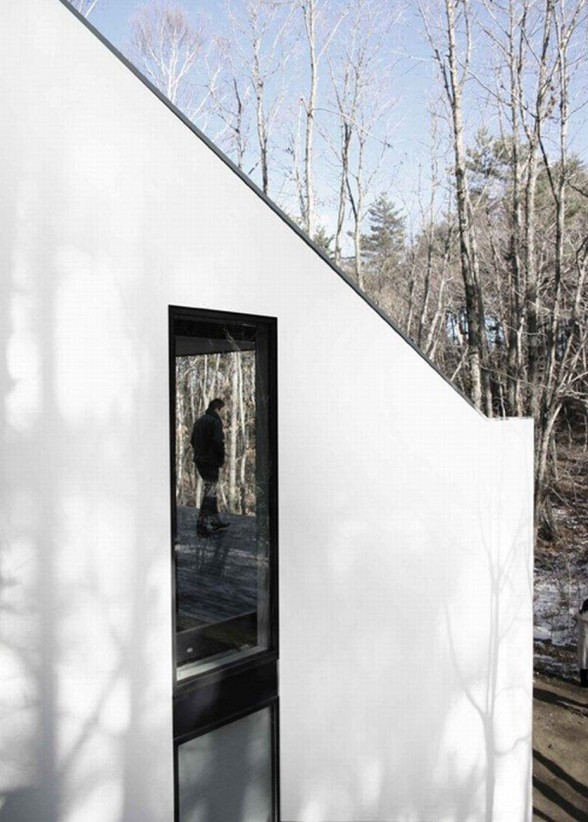 Forest House Design with Futuristic Architecture from Curiosity - Windows