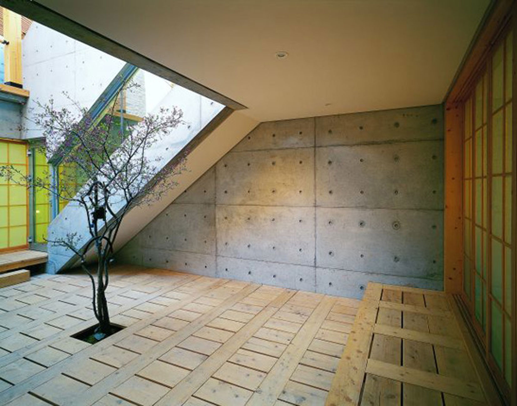 Great Combination of Wood and Concrete in a Courtyard House Design - Trees