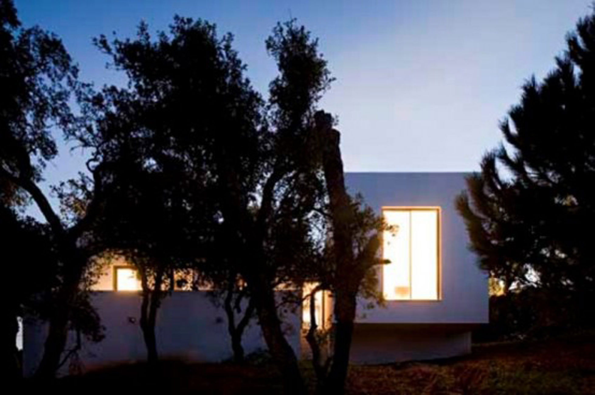 Miraventos, Modern House Design in Portugal by Eduardo Trigo de Sousa and ComA - Trees