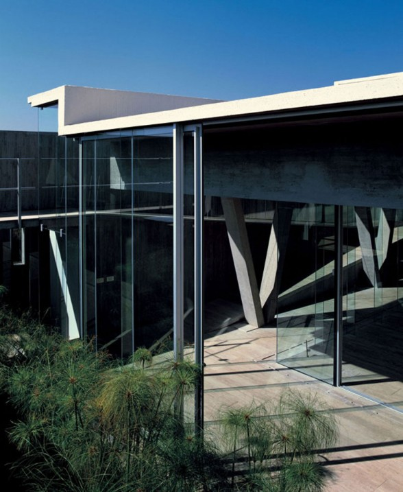 Steel Structure, Glass Façade and Concrete Architecture of a Fabulous House in Chile - Garden