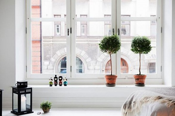 Swedish Interior Ideas in White Color - Trees