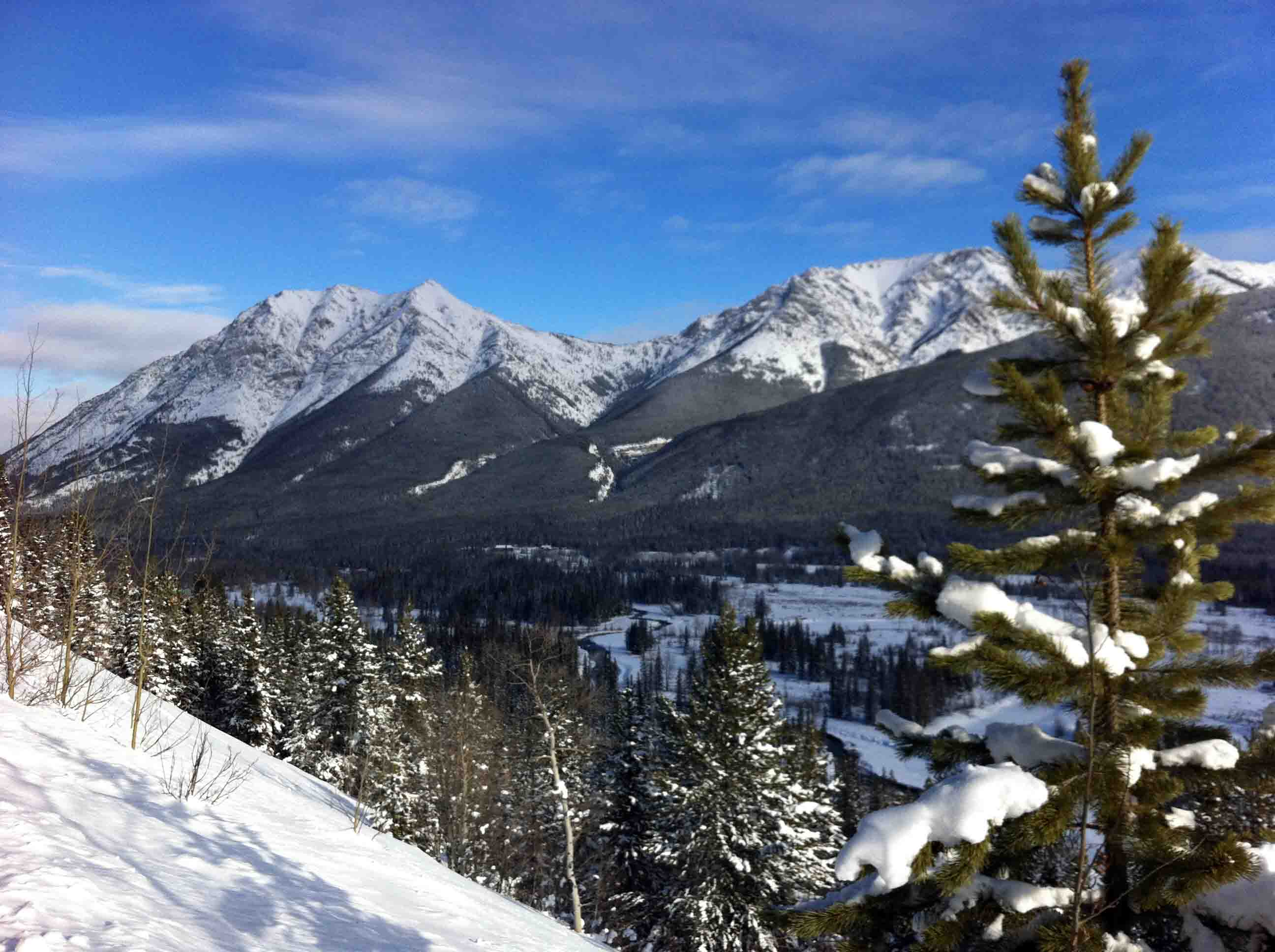 Rocky Mountain House view