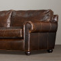 Amazing Modern Brown Color Leather Sleeper Sofas Design Ideas