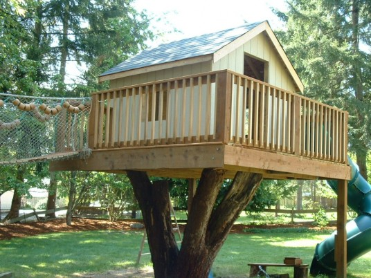 Tree house information