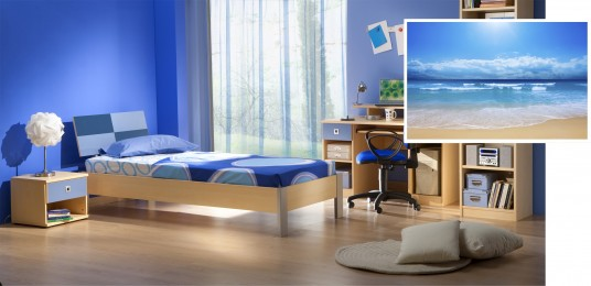 Natural Wooden Furniture Combination with Blue Color for Men Bedroom Look Cold