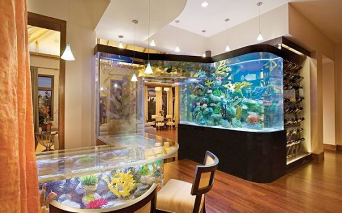 Acqua Liana Luxury Green House Aquarium Viahouse Com