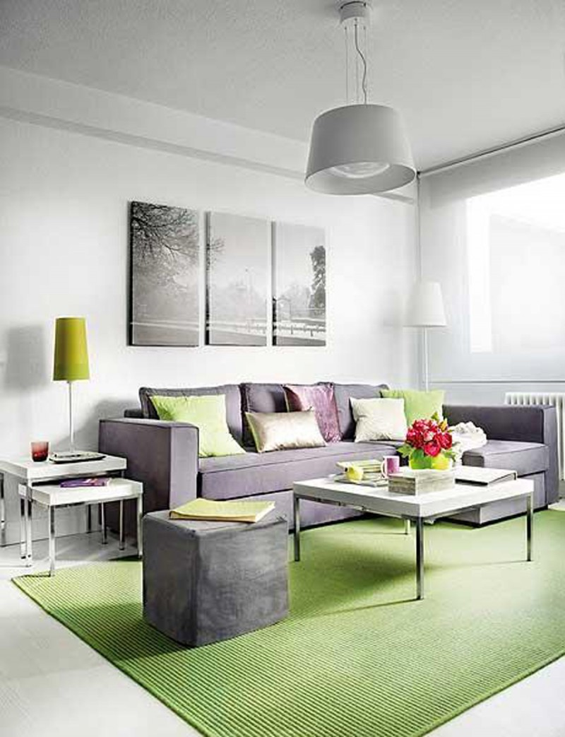 Intrinsic Interior Design Applied In Small Apartment Architecture Living Room Viahouse Com